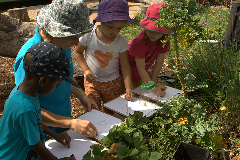 Educator and children drawing plants outside